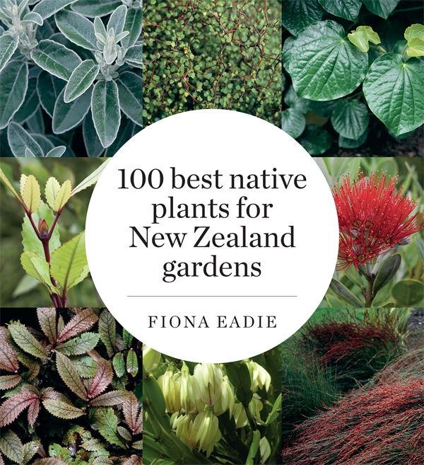 "From trees to ground covers, ferns to hebes, an expert guide to the top ""100 New Zealand native plants for gardens""."