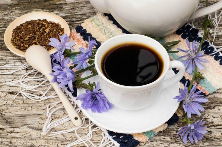 Caffè di cicoria, benefici e uso