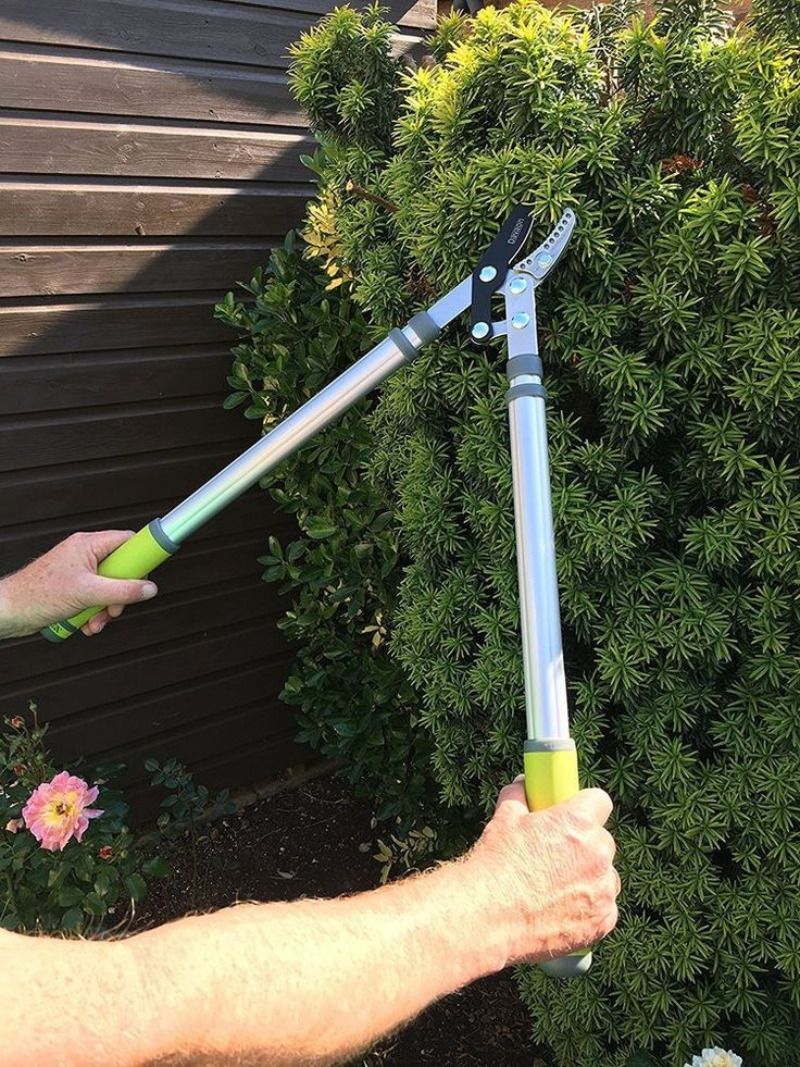 Telescopic Tree Loppers Extendable Branch Pruner Garden Clippers Hedge Sharp #Davaon