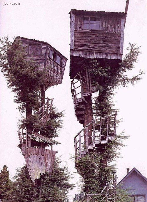 tree houses: Building, Favorite Places, Spirals Stairca, Dreams, Stuff, Awesome, Trees Houses, Treehouse, Things