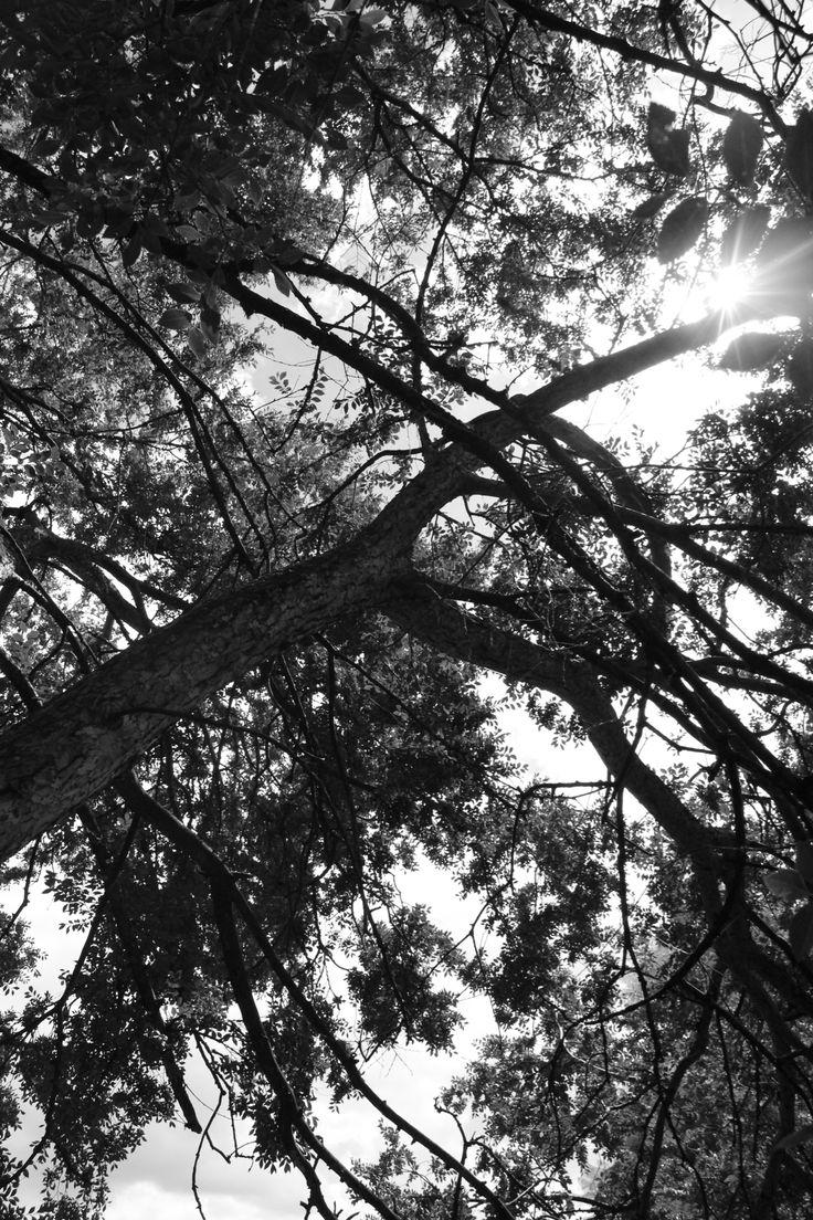 My photography 04