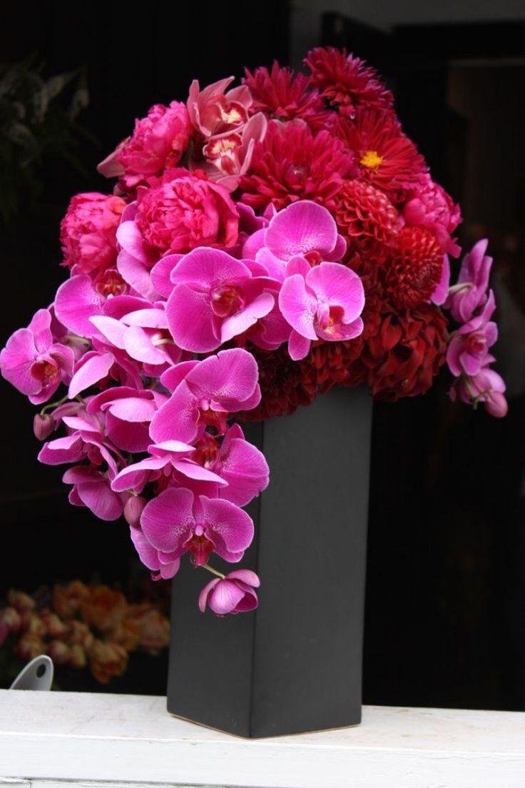 Ideas para regalar el mejor ramo por San Valentn, plantas que dicen te  quiero!