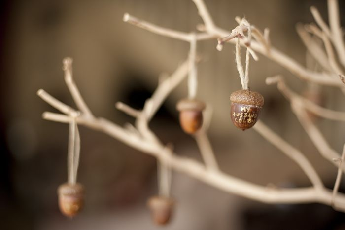 A Thankful Tree using acorns as ornaments. Gorgeous! #diy