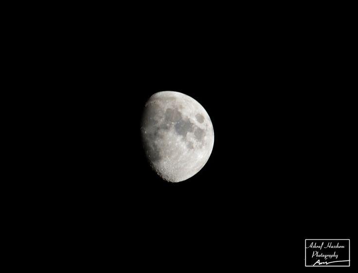 Moon seated a single