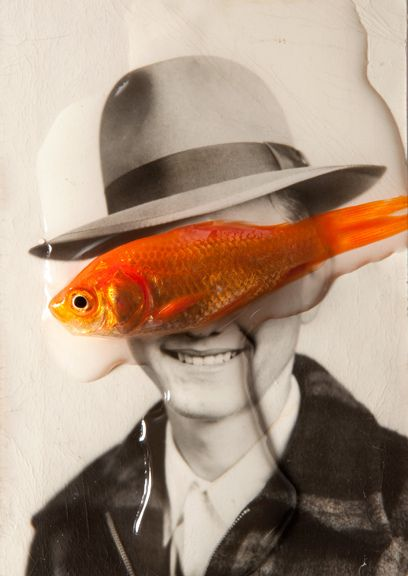goldfish on your face