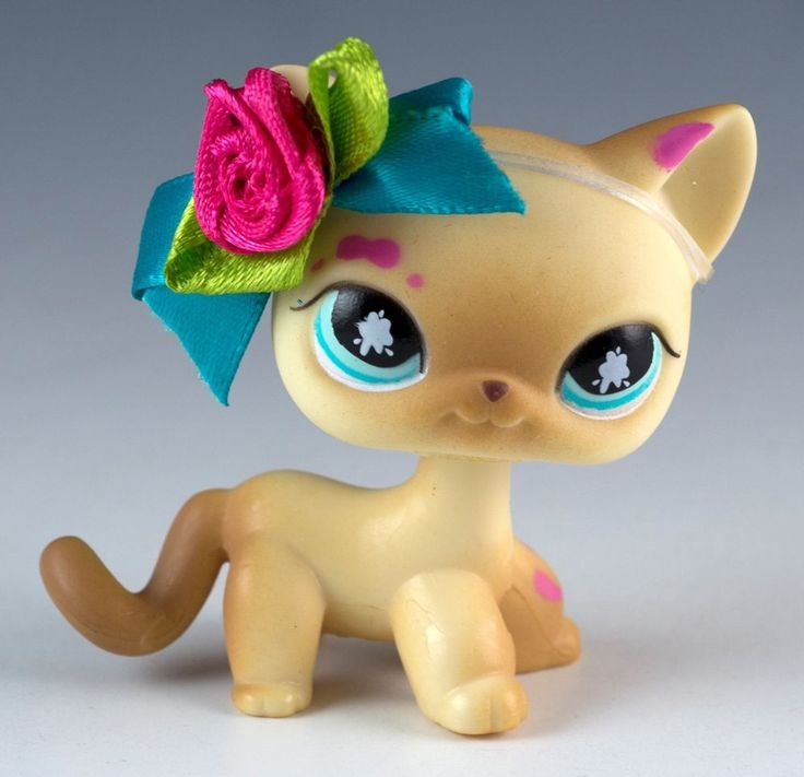 All Littlest Pet Shop Shorthair Cat Numbers