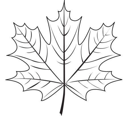 Maple Leaf - 3Doodler                                                                                                                                                                                 More