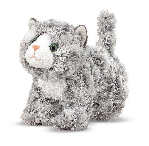 Roxie the Grey Tabby Kitten