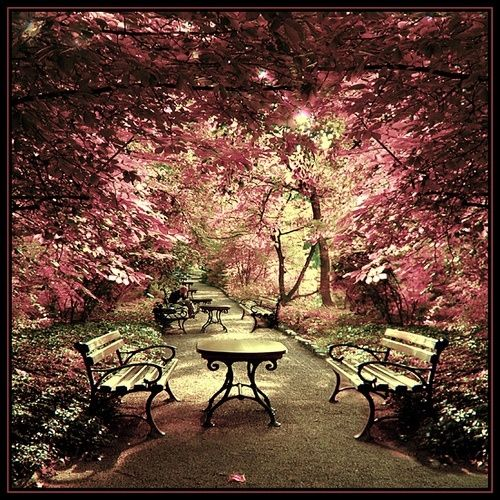 Botanical Garden, Wroclaw, Poland.