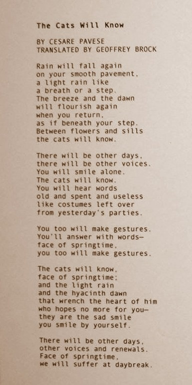 Poem by Cesare Pavese. The cats will Know