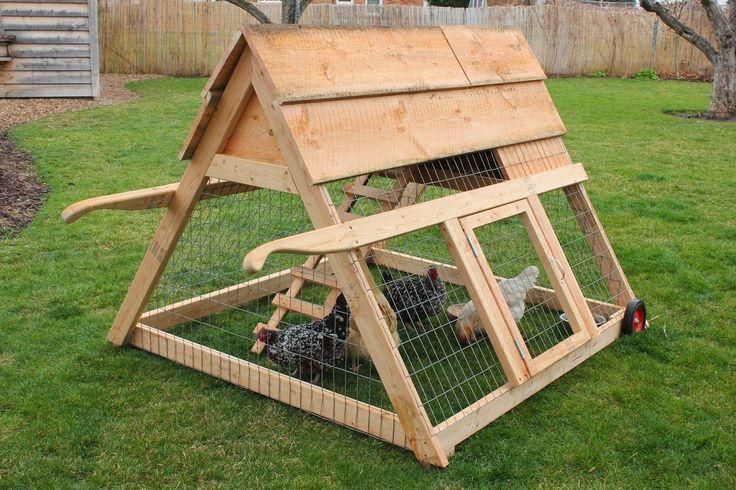 Backyard Farmgals: Backyard Chickens                                                                                                                                                      More