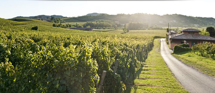 6. Franciacorta Wine Country