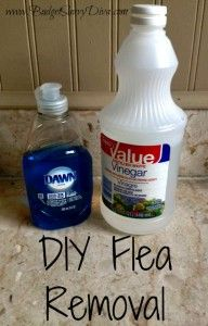 DIY Flea Removal  Mix one cup liquid dish soap, one cup white vinegar, and one quart of warm water . Transfer the mix into a squeeze bottle (like an old shampoo or Ketchup bottle). Shake before using.  Wash your dog with mix as you normally would.   Try to allow the mixture to sit for about five minutes before rinsing out.