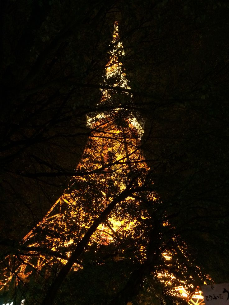 Tokyo Tower thru the tree in the night.