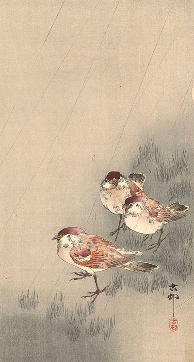 kacho-e, estampe japonaise d'oiseaux