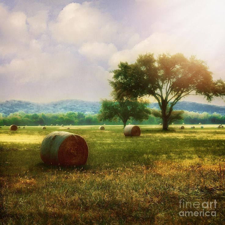 Arbuckle Mountains in background i think - Down In The Valley by Tamyra Ayles