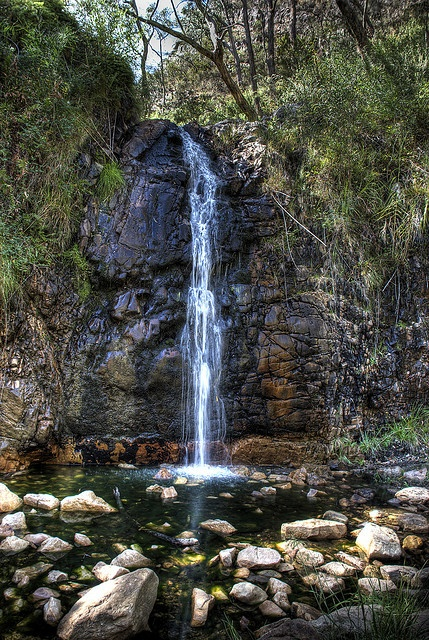 waterfall gully adelaide