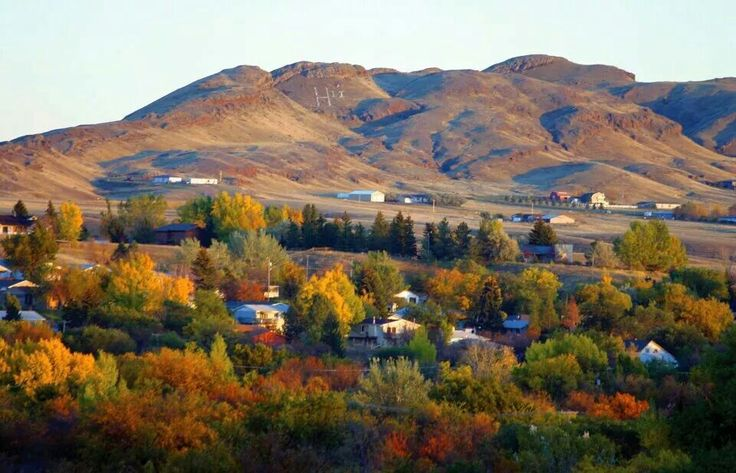 Montana State University Northern- Havre Montana- damn I went to the wrong school.