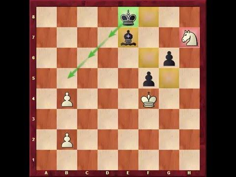 25+ best AJEDREZ images on Pinterest Chess, Aperture and Studios - chess score sheet