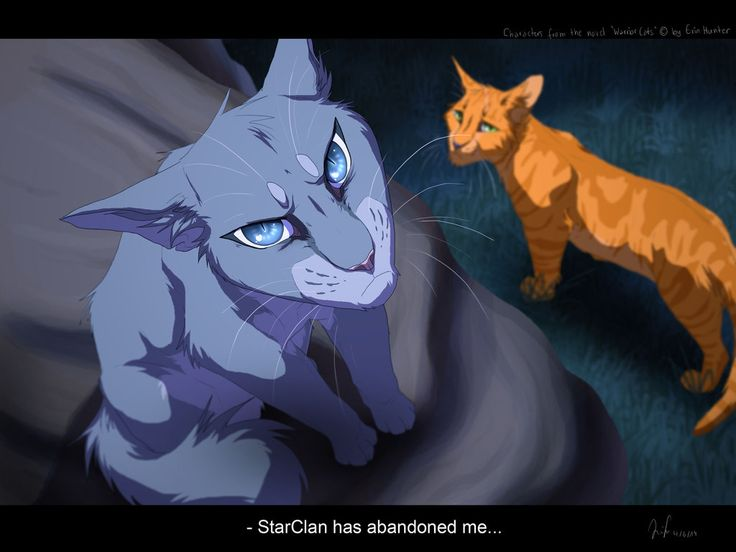 Bluestar went insane and went against her ancestors.....her deputy Fireheart watching from below