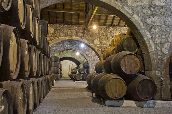 Old cellar with rows of wooden wine barrels by Anastasy Yarmolovich #AnastasyYarmolovichFineArtPhotography  #ArtForHome #Food #Drink