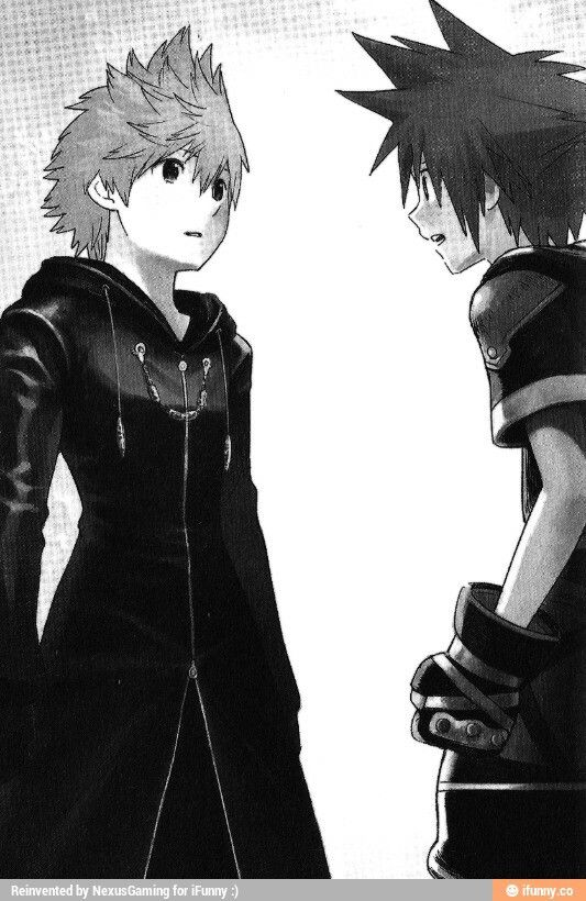 Roxas & Sora. I don't know why, but I have this feeling that if they see each other, the world could just explode