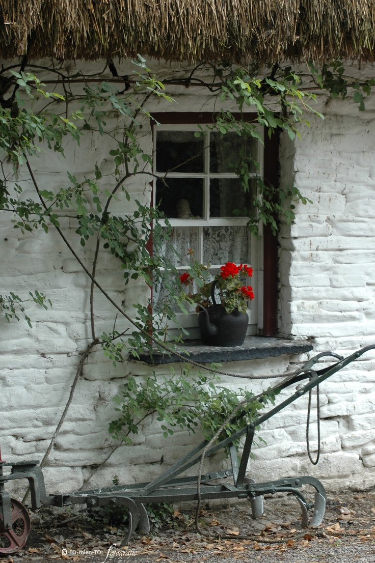..rh********I like the age of the wall and the color white; the old farm tool; the kettle; flower; curtain; mullins...njoy<><