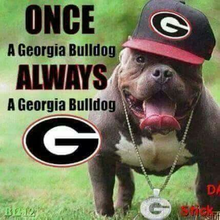georgia bulldog fans always a georgia bulldog georgia girl pinterest 4516