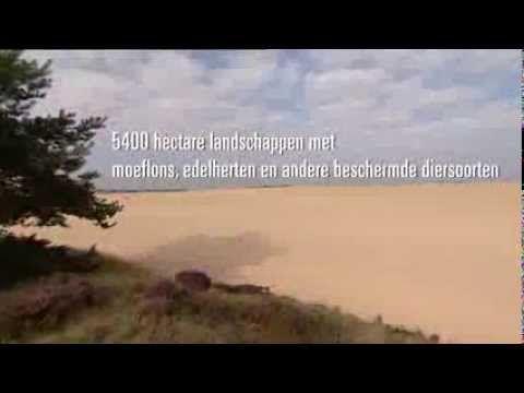 Inschrijven Hoge Veluwe Loop 2014 - Hoge Veluwe Loop - Evenementen - Ontdek het Park - Hoge Veluwe