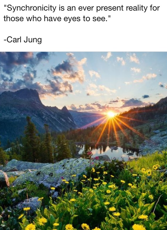 carl jung synchronicity essay Wolfgang paulis fludd/flood synchronicity and the future development of the future development of psychophysical of synchronicity, defined by carl jung.