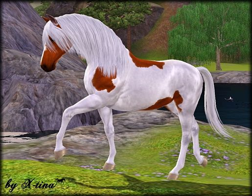 1000+ Images About Beautiful Sims 3 Horse Poses On