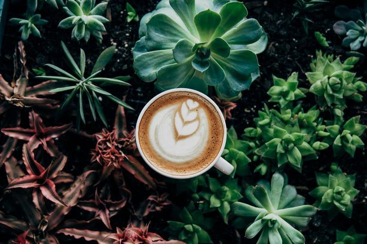 10 Anxiety-Reducing Strategies for Mastering the Coffee Meeting. You'll be chatting and sipping your way to #boss status in no time.
