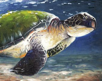 SEA TURTLE ART original watercolor animal painting by SignedSweet