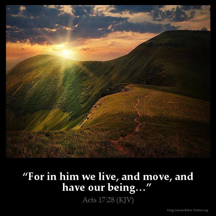 Kjv bible verse acts 17 28 quot for in him we live and move and have