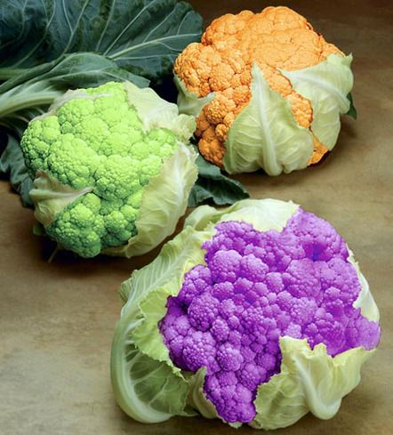 green, orange & purple cauliflower