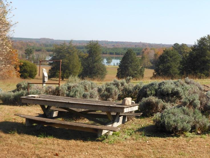 Palenstine Farm, Caroline County, VA