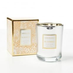 Homewares Home Fragrance online from Adairs