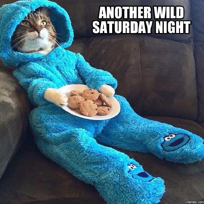 Another wild Saturday night