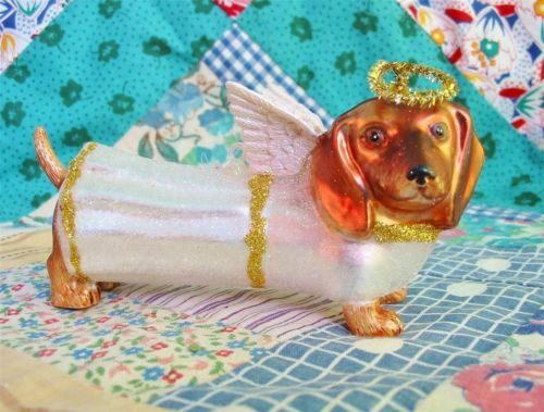 17 Best Images About Doxie Christmas On Pinterest