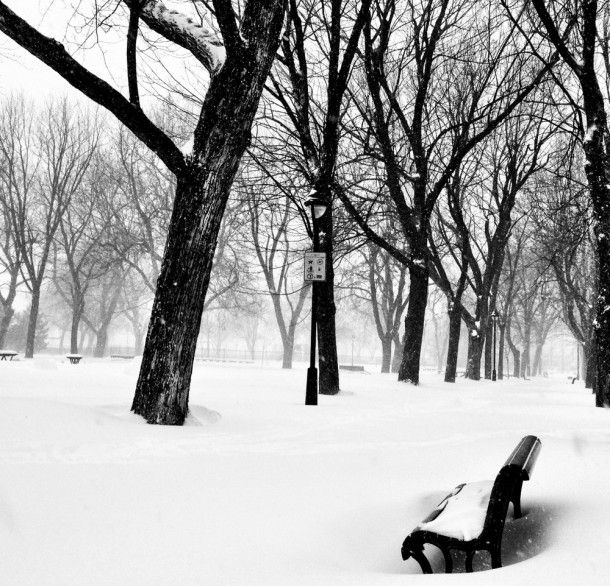Montreal under the snow