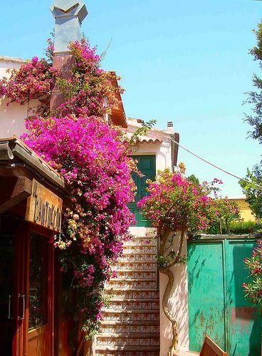 Toscana MARINA DI CAMPO - ISOLA D'ELBA #TuscanyAgriturismoGiratola