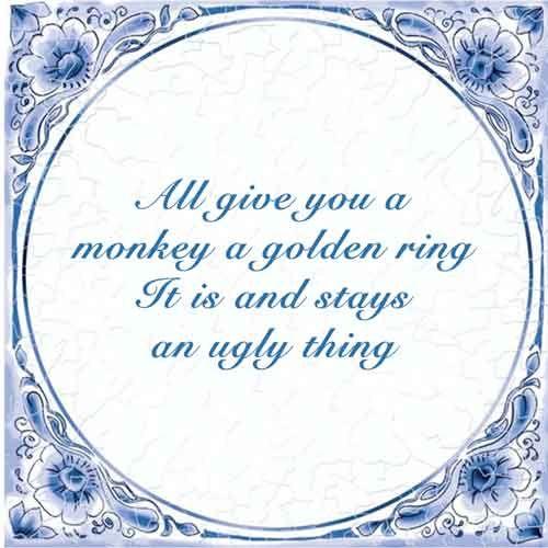 Al geef je een aap een gouden ring, het is en blijft een lelijk ding