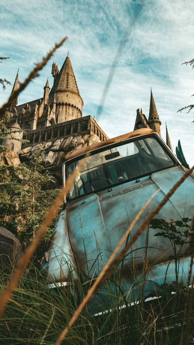 Harry Potter Hogwarts Whomping Willow Harry Potter Tumblr Harry Potter Aesthetic Harry Potter Wallpaper