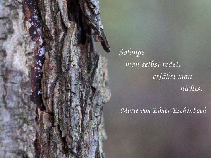 Solange man selbst redet, erfährt man nichts. Marie von Ebner-Eschenbach #zitat #quote #printables #Aufmerksamkeit
