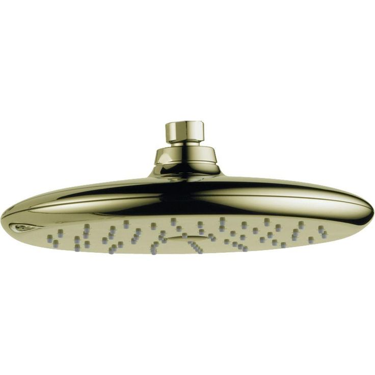 Delta Rizu 1-Spray 8-3/4 in. Raincan Shower Head in Polished Brass