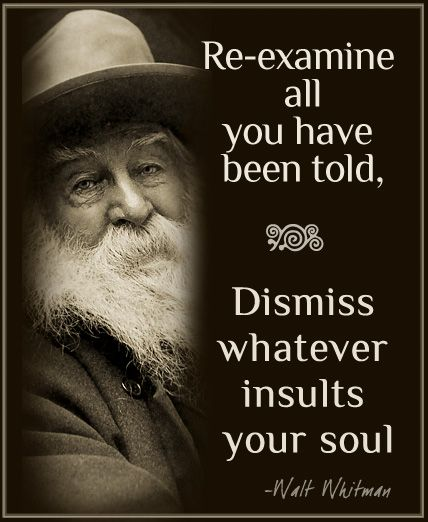 Walt Whitman Quotes Love: Best 25+ Insulting Quotes Ideas Only On Pinterest