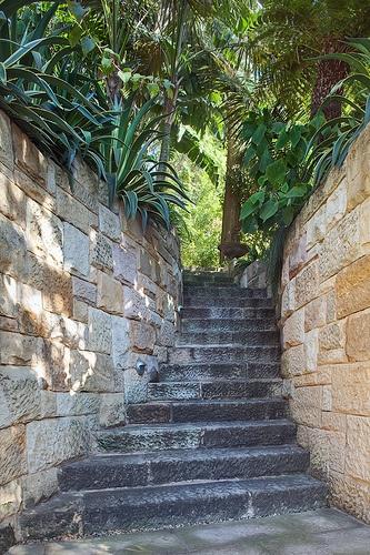 Garden stairs 1