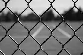chain link fence - Google Search