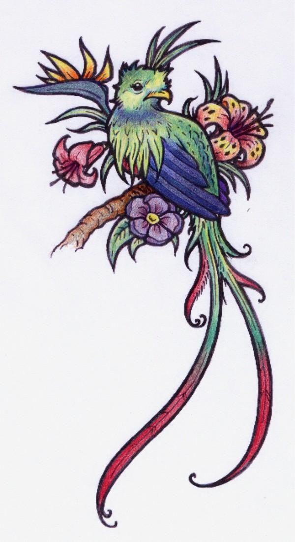 Tatuagem Quetzal Tattoo Flickr Photo Sharing Twiwaminenu