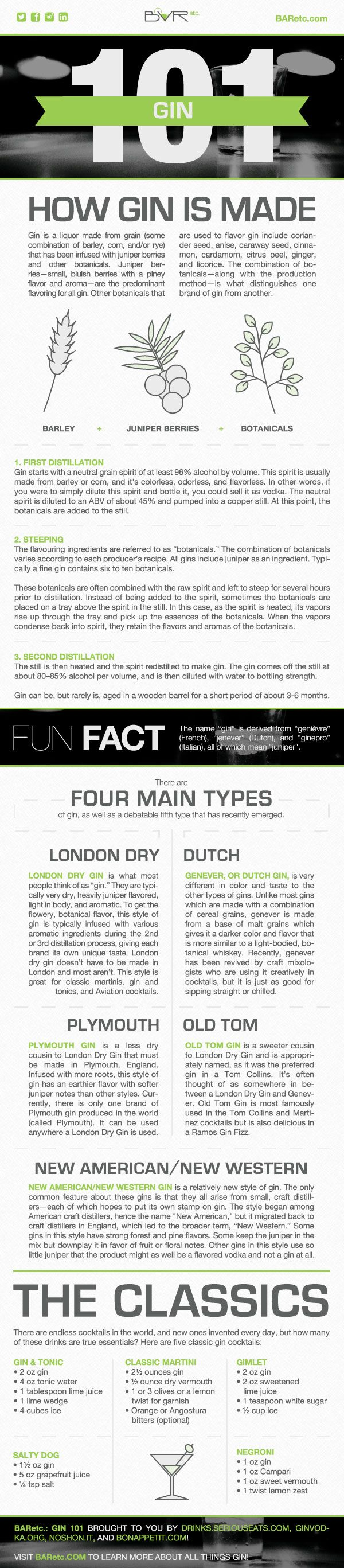 Gin 101 Infographic, designed by Emily Harris, Graphic Design Coordinator at BARetc.